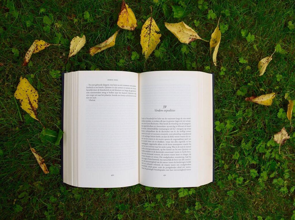 30代から始める英語学習の手引き【確実性と楽しさを重視】
